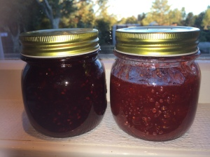 Blackberry and Strawberry Jam